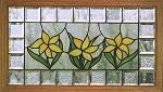 Daffodil Transom